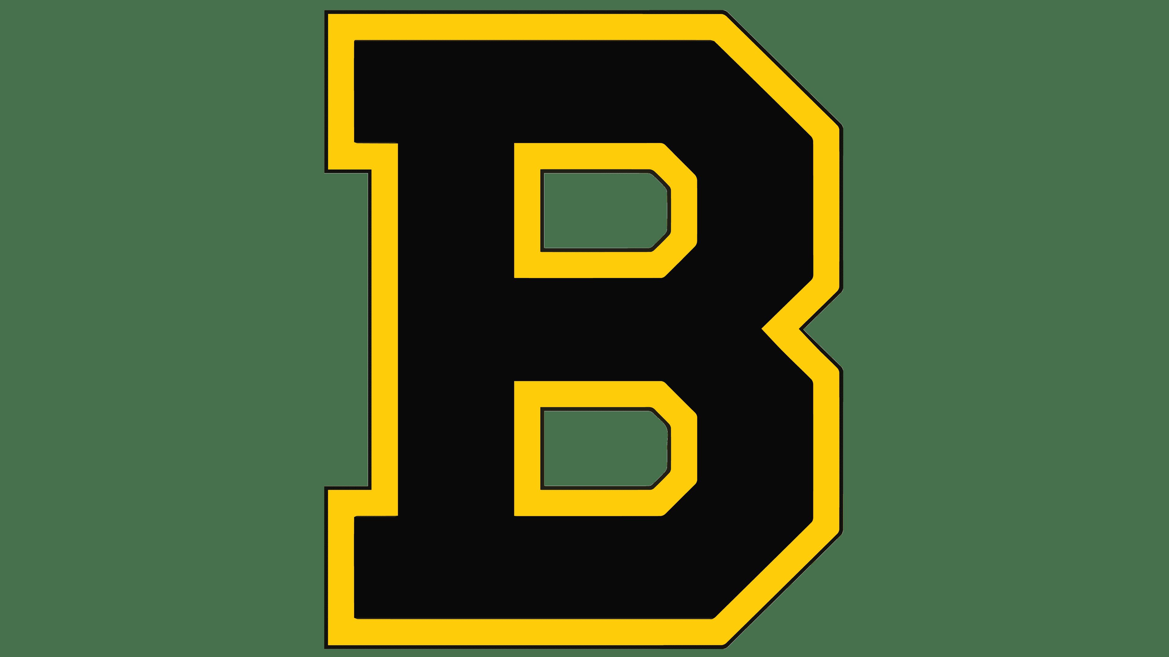 Boston Bruins image