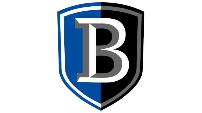 Bentley Falcons Logo 2013-Present
