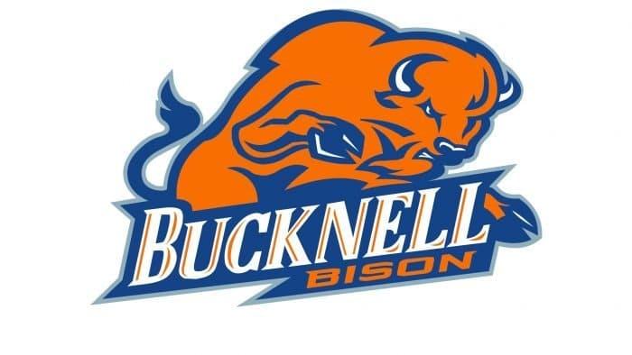 Bucknell Bison Logo 2002-Present