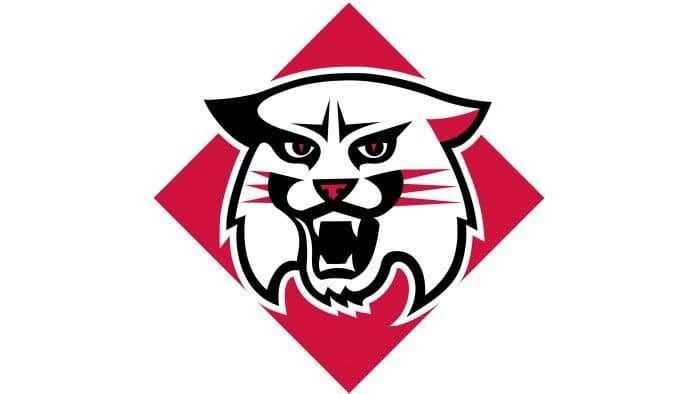 Davidson Wildcats Logo 2010-Present