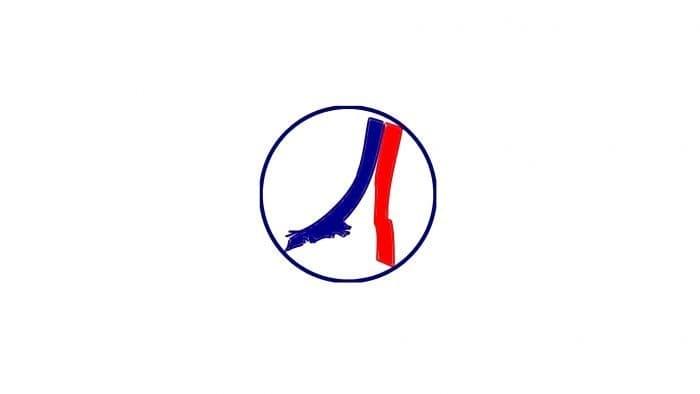 PSG Logo 1986-1987